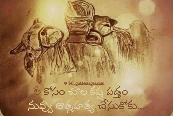 Farmer Inspirational image