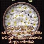 Telugu Good Night Quote on Life
