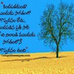 Inspirational telugu quote - Self boosting