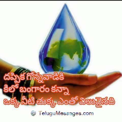 Save Water Quotes