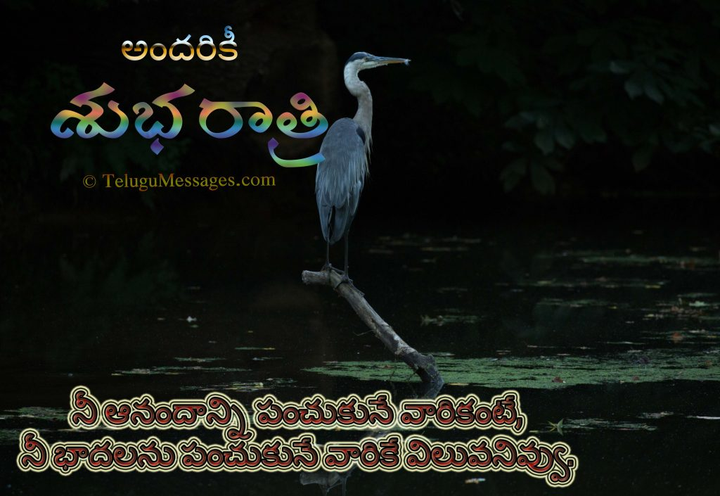 Telugu Motivational Good Night Quote