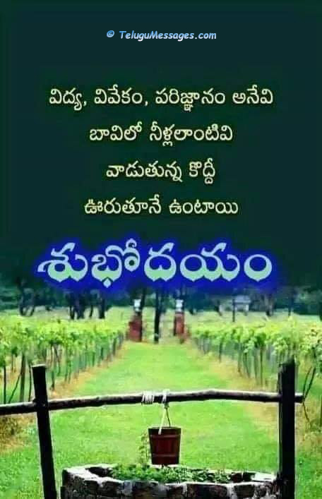 Inspirational Good Morning Telugu Quotes