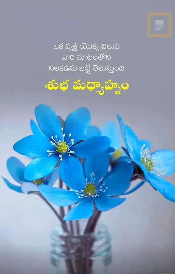 Telugu Good Afternoon Quotes - Free Download
