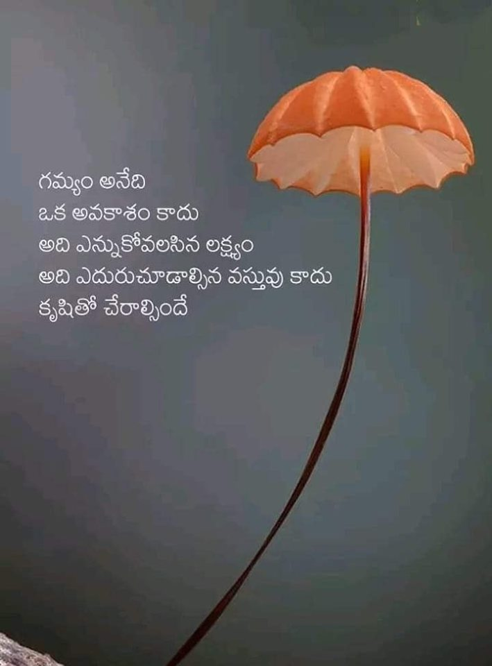 Telugu Quotes on Goal