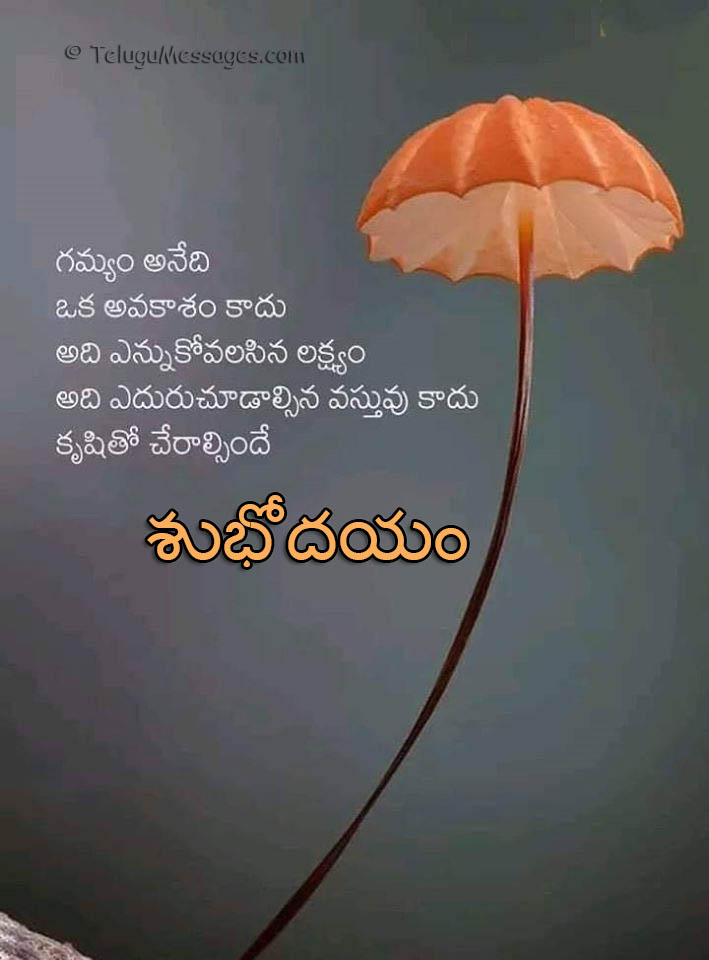 Destiny quote in Telugu - Good Morning