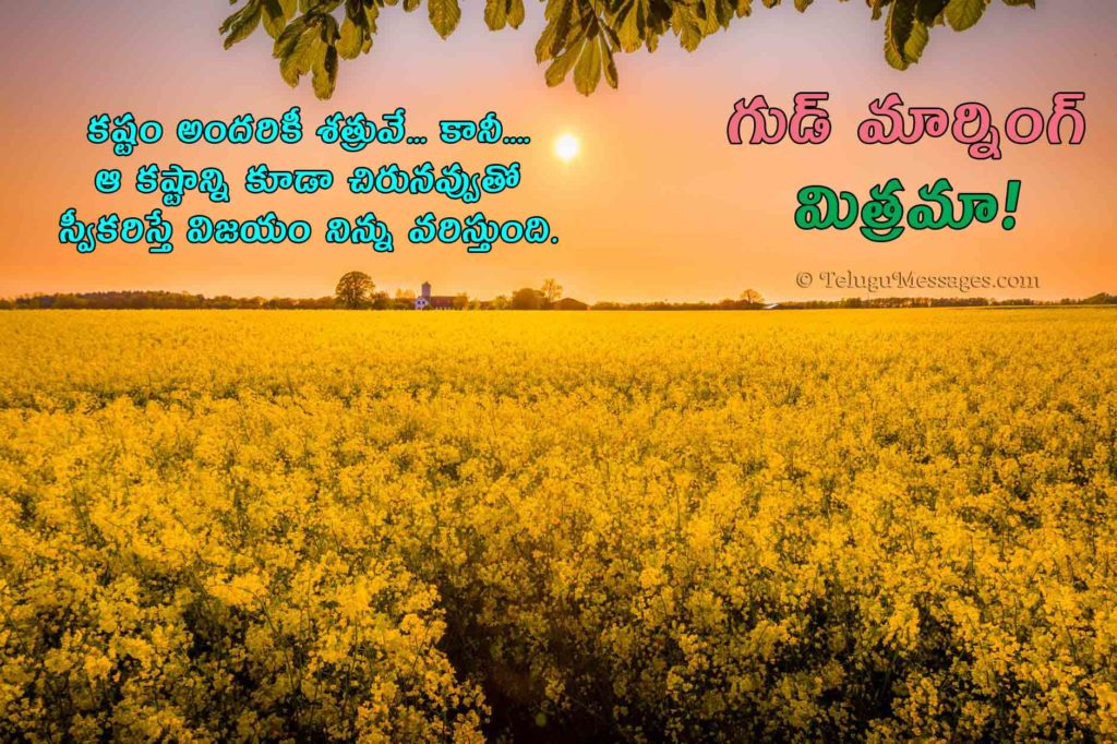 Difficulties quotes in Telugu with gud morning