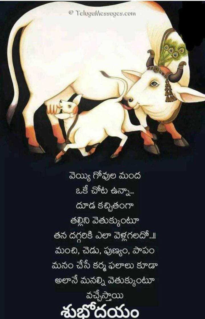 Good Morning Telugu Quote on Mothers Love