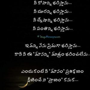 Sad Love message in Telugu