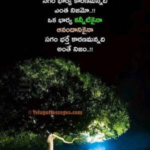 Wife and Husband Sad Quotes Status in Telugu
