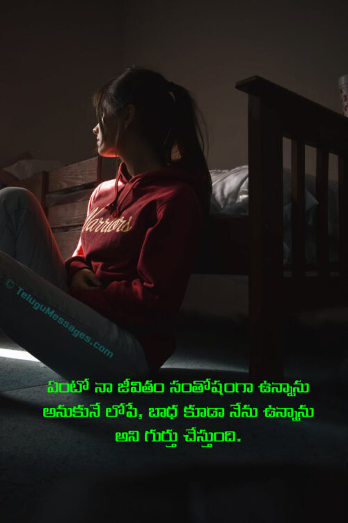 Feeling Sad Caption in Telugu